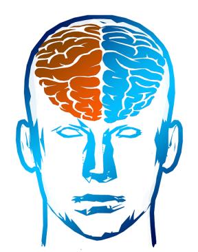 brain-half.png